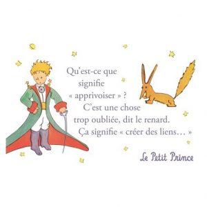 carte-postale-le-petit-prince-qu-est-ce-que-signifie-apprivoiser