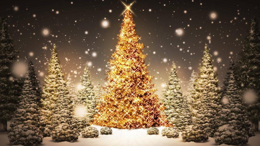 [Idées Cadeaux Noël] Une avalanche de livres sur Noël !