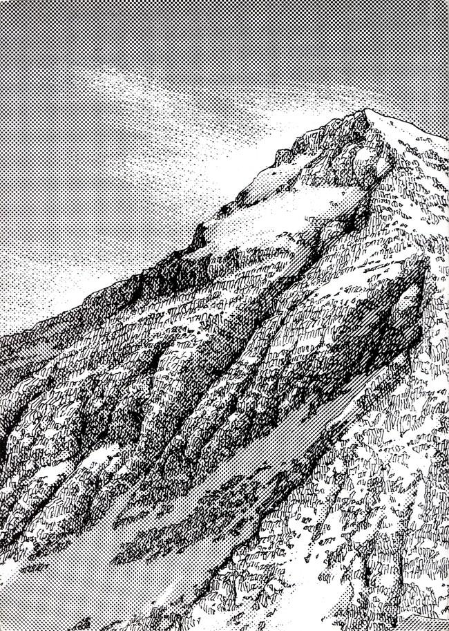 Le sommet des dieux - T3