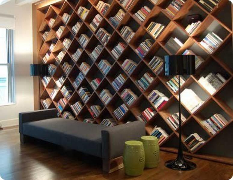 la bibliothèque maniaco-depressive