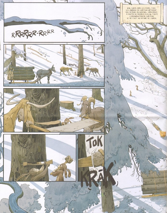 Les marguerites de l'hiver